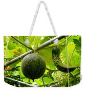 Cantaloupe And Hanging On Tree 1 Weekender Tote Bag