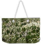 Canvas Of Cacti Weekender Tote Bag