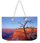Canyon Tree Weekender Tote Bag