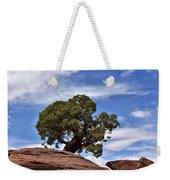 Canyonlands Tree Weekender Tote Bag