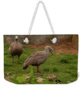 Cape Barren Geese Facing Right Weekender Tote Bag