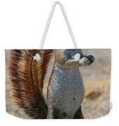 Cape Ground-squirrel  Weekender Tote Bag