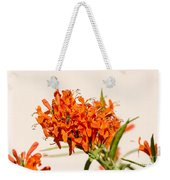 Cape Honeysuckle - The Autumn Bloomer Weekender Tote Bag
