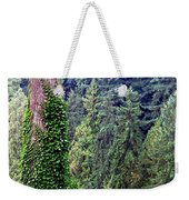 Capilano Canyon Ivy Weekender Tote Bag by Will Borden