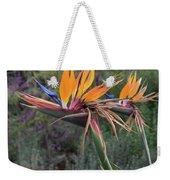 Captivating Bird Of Paradise In Full Bloom Weekender Tote Bag