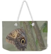 Captivating Photo Of A Brown Morpho Butterfly Weekender Tote Bag