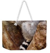 Captive Ring Tailed Lemur Perched In A Stone Tree Weekender Tote Bag