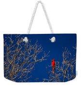 Cardinal Against Blue Sky Weekender Tote Bag