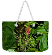 Cardinal Airplant Weekender Tote Bag