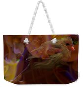 Cardinal And Abstract Weekender Tote Bag