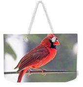 Cardinal Weekender Tote Bag