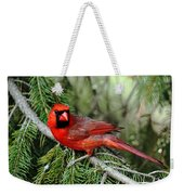 Cardinal Attitude Weekender Tote Bag