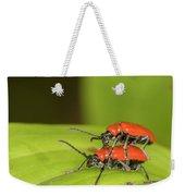 Cardinal Beetle  Weekender Tote Bag