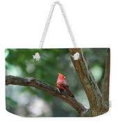 Cardinal In Tree Weekender Tote Bag