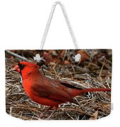 Cardinal On Pine Straw Weekender Tote Bag