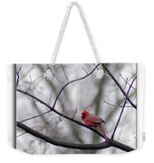 Cardinal Perched On A Branch Weekender Tote Bag