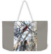 Cardinals In Mossy Tree Weekender Tote Bag