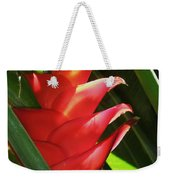 Caribbean Color Weekender Tote Bag