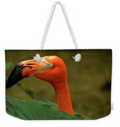 Caribbean Flamingo Weekender Tote Bag