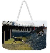 Caribou Cow And Fawn Weekender Tote Bag