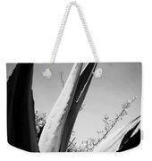 Carmel Mission Agave In B And W Weekender Tote Bag