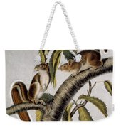 Carolina Grey Squirrel Weekender Tote Bag