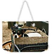 Carriage Dog Weekender Tote Bag