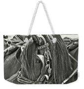Carriage Horse Beauty Weekender Tote Bag