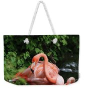 Carribean Flamingo Bird Ruffling His Feathers Weekender Tote Bag