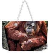 Cartoon Comic Style Orangutan Sitting In Tree Fork Weekender Tote Bag