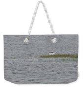 Caspian Terns Weekender Tote Bag