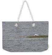 Caspians Weekender Tote Bag