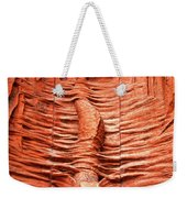 Cast In Clay Weekender Tote Bag