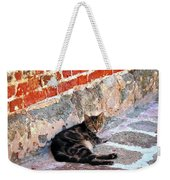 Cat Against Stone Weekender Tote Bag