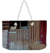 Cat And Barn Weekender Tote Bag