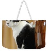 Cat Contimplation Weekender Tote Bag