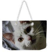 Cat Weekender Tote Bag