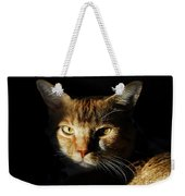 Cat In Shadow Weekender Tote Bag