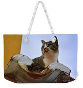 Cat In The Roof Weekender Tote Bag