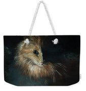 Cat In The Shade Weekender Tote Bag