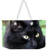 Cat Marquis Weekender Tote Bag