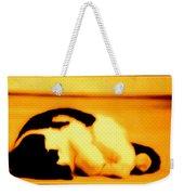 Cat Nap Weekender Tote Bag