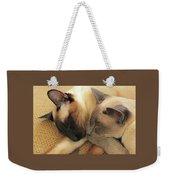 Cat Nap With Toby And Sadi Weekender Tote Bag
