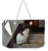 Cat On Steps Weekender Tote Bag