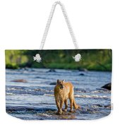 Cat On The River Weekender Tote Bag