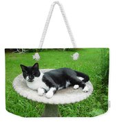 Cat Relaxing In A Birdbath In The Summertime  Weekender Tote Bag