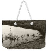 Cat Tail Reflections Weekender Tote Bag