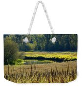 Cat Tails In The Sun Weekender Tote Bag