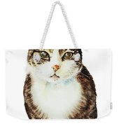 Cat Watercolor Illustration Weekender Tote Bag