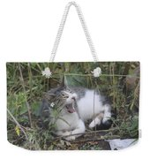 Cat Yawning In The Garden Weekender Tote Bag